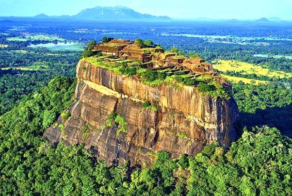 清境斯里蘭卡~驚嘆獅子岩、丹布拉石窟、雅拉國家公園、錫蘭採茶小鎮九日